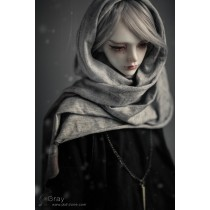 SD Grey
