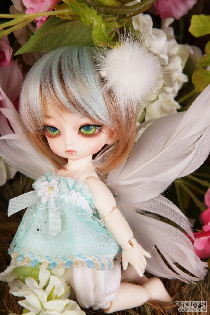 Tiny Delf  KAI (Elf Ver.)