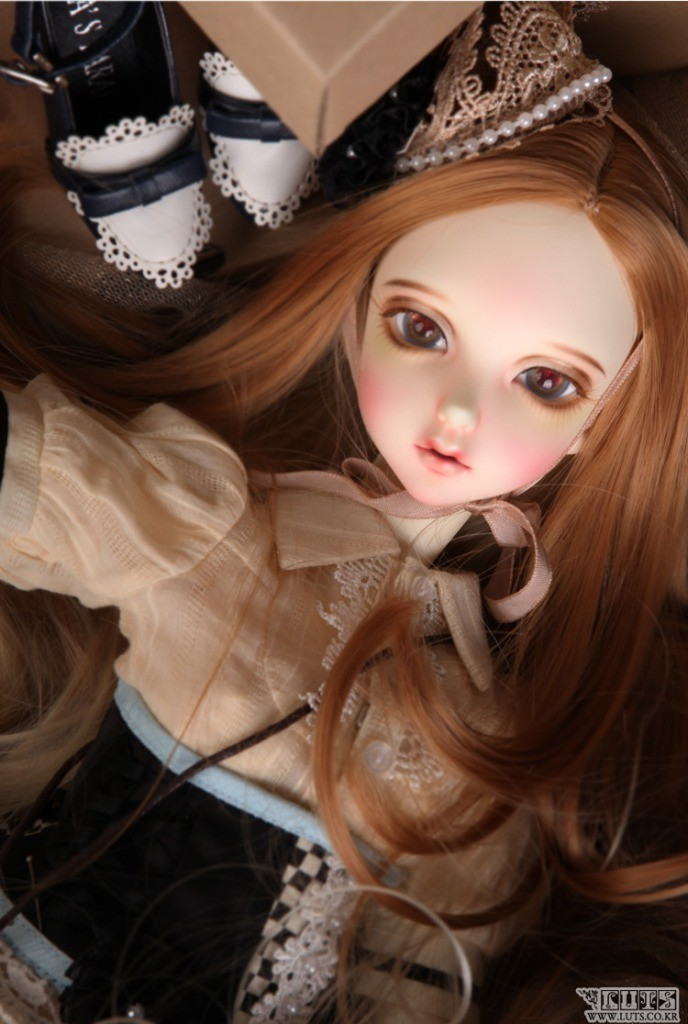Luts Delf ANN
