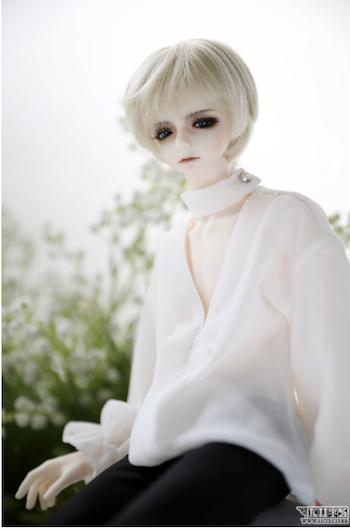 Model Delf BLISS
