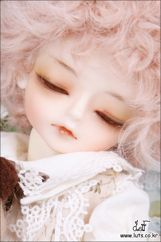 Honey Delf TAFFY DREAMING