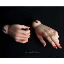Soul Doll Hands 1 (Zenith girl)
