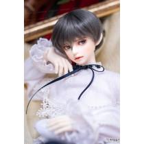 Model Delf TERRA