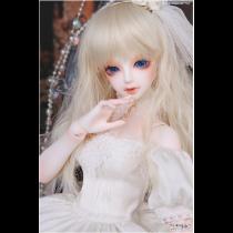 Model Delf DIA