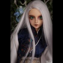 Senior65 Delf ASH