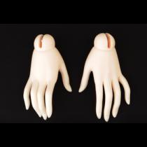 Senior Delf Hands-2 For Senior Delf Girl